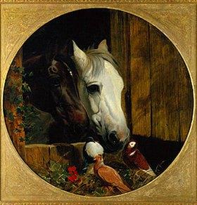 John Frederick Herring d.Ä.: Köpfe zweier Pferde und Tauben