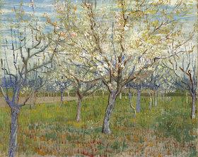 Vincent van Gogh: Rosa Obstgarten