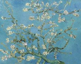 Vincent van Gogh: Mandelblüte