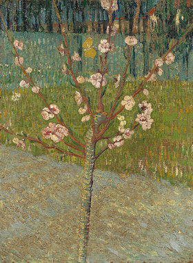 Vincent van Gogh: Blühender Mandelbaum. Arles