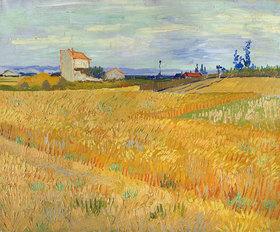 Vincent van Gogh: Weizenfeld (Champ de blé)