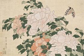 Katsushika Hokusai: Rosafarbene und rote Pfingstrosen und ein Schmetterling