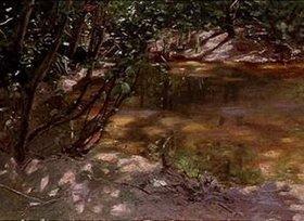 Alexander Koester: Waldweiher bei Brixen