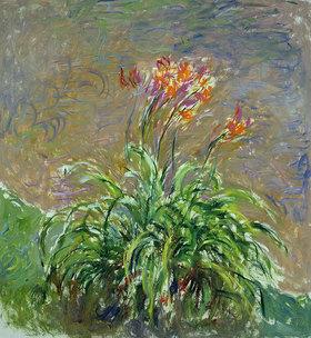 Claude Monet: Taglilien