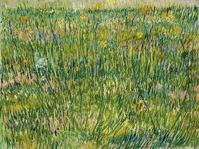 Vincent van Gogh: Rasenstück