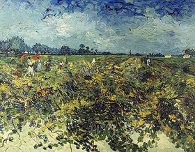 Vincent van Gogh: Der grüne Weingarten