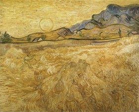 Vincent van Gogh: Umfriedetes Weizenfeld mit Schnitter