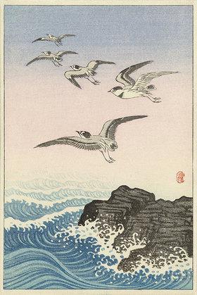 Ohara Shôson: Möwen über einem Felsen im Meer