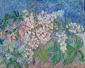 Vincent van Gogh: Blühende Kastanienzweige