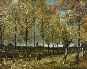Vincent van Gogh: Pappeln bei Nuenen