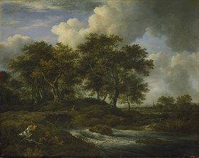 Jacob Isaacksz van Ruisdael: Eichen an einem Gießbach