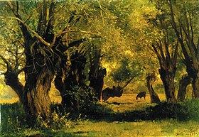 Carl Bolze: Landschaft unter Bäumen