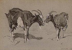 Anton Braith: Zwei Geißen, stehend