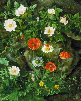 Augusta Laessoe: Wildrosen, Mohnblumen und Gänseblümchen an einer Steinbank
