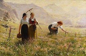 Hans Dahl: Ein Sommertag in Norwegen