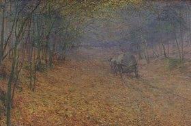 Antonin Slavicek: Im Herbstnebel