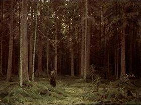 Iwan Iwanowitsch Schischkin: Im Wald der Gräfin Mordwinowa