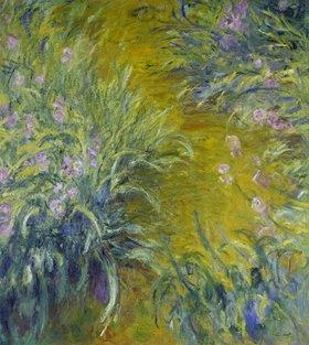 Claude Monet: Iris im Garten