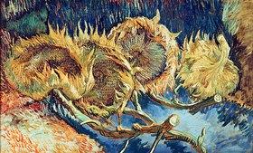 Vincent van Gogh: Vier abgeschnittene Sonnenblumen