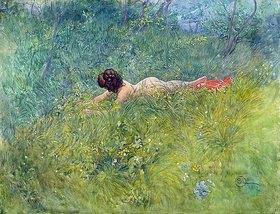 Carl Larsson: Im Gras (I gröngraset)