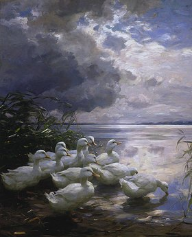 Alexander Koester: Enten an wolkenverhangenem See-Ufer