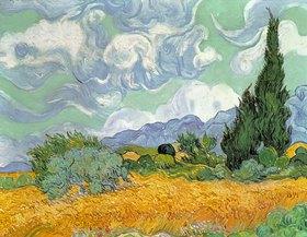 Vincent van Gogh: Weizenfeld mit Zypressen