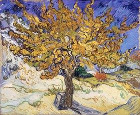 Vincent van Gogh: Mulberry Tree