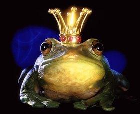 Christoph Hellhake: Froschkönig