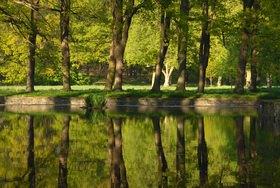 Günter Kozeny: Schlosspark Wasserschloss Mellenthin