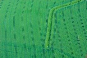 Günter Kozeny: Agrarfeld grün