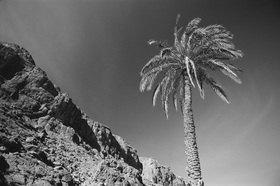 Günter Kozeny: Marokko; Felsenschlucht