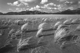 Günter Kozeny: Namibia; Farmland