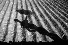Günter Kozeny: Lanzarote, Schattenspiel