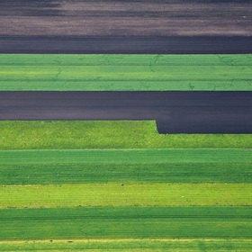 Günter Kozeny: Luftaufnahme, Komposition in Grün und Schwarz