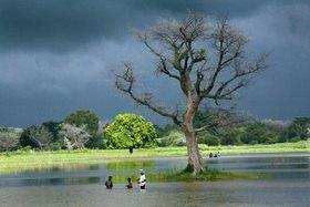 Horst A. Friedrichs: Africa MALI MOPTI