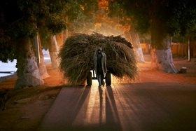 Horst A. Friedrichs: Africa MALI Mopti Light