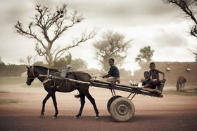 Horst A. Friedrichs: Africa Mali Djenne Kinder reiten mit Heuwagen im Sandsturm