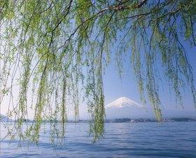 Blick auf den Fuji-san im Fuji-Hakone-Izu-Nationalpark, Honshu, Japan