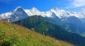 Blick von der Schynige Platte auf Eiger, Mönch und Jungfrau