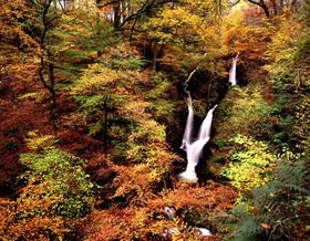 Stockghyll Force Wasserfall bei Ambleside, Lake District, Cumbria, England, Grossbritannien