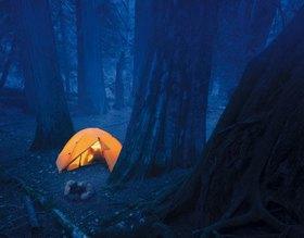 Zelten im Mount Rainier Nationalpark, Washington, USA