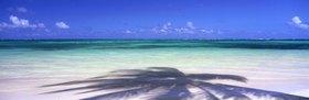 Punta Cana, palm tree shadow on the sea, Santo Domingo, Karibik, Dominikanische Republik