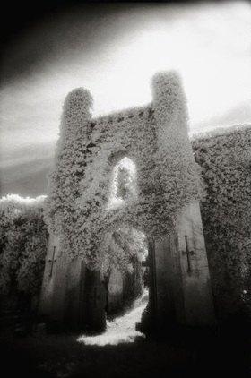 Moydrum Castle,Westmeath,Irland