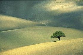 Provinz Enna, Landscape, Sizilien, Italien