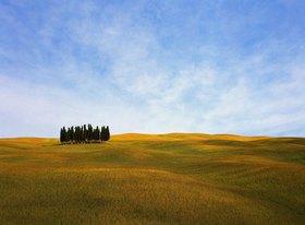 Typical landscape, Val d'Orcia, Provinz Siena, Toskana, Italien