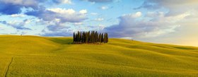 Rolling landscape near San Quirico d'Orcia, Orcia Tal, Toskana, Italien