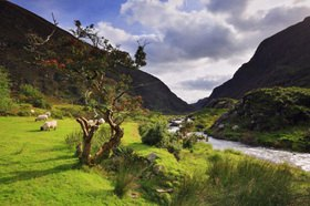 The spectacular Gap of Dunloe, Macgillycuddy's Reeks, Killarney, Kerry, Irland