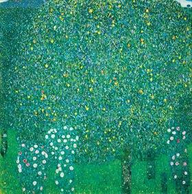 Gustav Klimt: Rosen unter Bäumen. Öl auf Leinwand