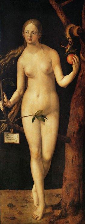Albrecht Dürer: Eva