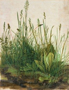 Albrecht Dürer: Das grosse Rasenstück. Aquarell/Tempera